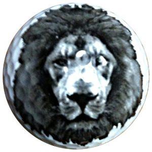 Lion Balles de Golf fantaisie