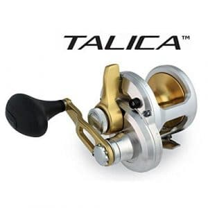 Shimano Talica TAC12 Single Speed Reel – Right-Handed by Shimano