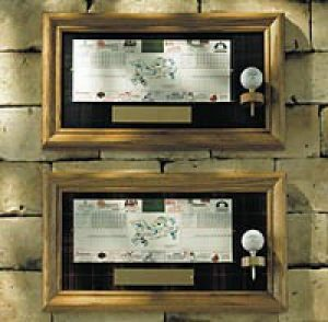 Golf Ball Scorecard Display by Hornungs