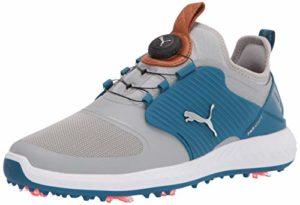 Puma Ignite Pwradapt Caged Disc Chaussure de golf pour homme, gris (High Rise-puma Silver-digi Blue), 45.5 EU