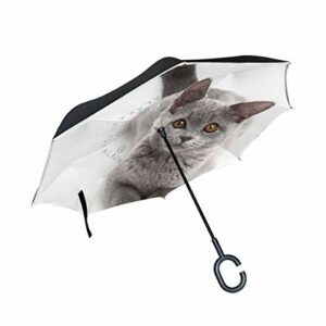 Lenenl Parapluie inversé avec yeux de chat Gris double couche inversé parapluie pour voiture et extérieur