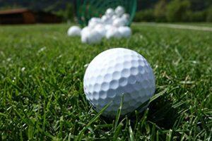 Recreatio | 20 Lakeballs Ballon de golf | Marque TOP | Qualité AAA/AA | Balles de golf usagées avec logos, marquages et abrasions | Blanc