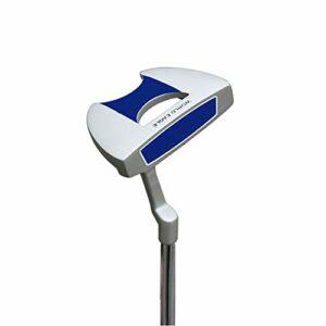 ROBDAE Ensemble de Clubs de Golf en Alliage de Zinc et Acier Inoxydable pour Homme et Femme 34.5 inches Bleu