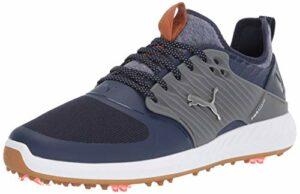 PUMA Men's Ignite Pwradapt Caged Golf Shoe, Peacoat Silver-Quiet Shade, Numeric_7